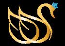 dds-logo-outline-20161230-02